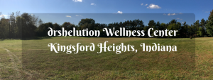 drshelution Wellness Center